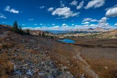 Sikt uppifrån av poppelpasserandet Colorado royaltyfri bild