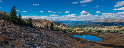 Sikt uppifrån av poppelpasserandet Colorado arkivfoto