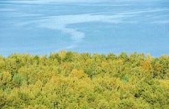 Sikt uppifrån, skog och vatten Arkivfoton