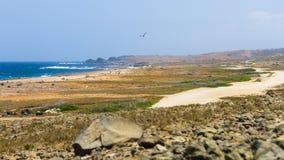 Sikten av Arikok parkerar, Aruba arkivfoto