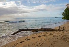 Sikten av Barbados seglar utmed kusten nordväst med cementväxtbryggan i bakgrunden Arkivbild