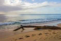 Sikten av Barbados seglar utmed kusten nordväst visa det lugna blåa vattnet av det karibiska havet Royaltyfri Bild