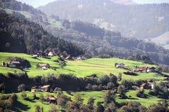 Sikten av betar och berg i Schweiz Fotografering för Bildbyråer