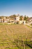 Sikten av Custoza omgav vid vingårdarna Arkivfoton