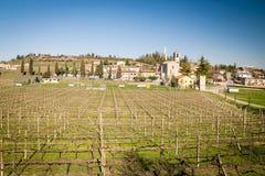 Sikten av Custoza omgav vid vingårdarna Royaltyfri Foto