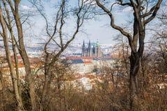 Sikten av den härliga Sten Vitus Cathedral och Hradcany arkivbilder