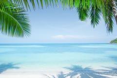 Sikten av den trevliga tropiska stranden med något gömma i handflatan Royaltyfria Bilder