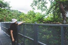 Sikten av den unga kvinnan som ser sikten från himmel, går på Chiangm royaltyfria bilder