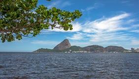 Sikten av det gröna trädet och Guanabara skäller med det Sugarloaf berget in fotografering för bildbyråer