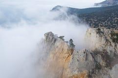 Sikten av dimmiga dimmaberg - vagga med sörjer trädet Royaltyfria Bilder