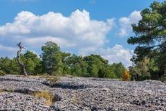 Sikten av ett geologiskt vaggar parkerar panorama Royaltyfri Fotografi