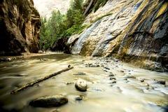 Sikten av floden i Zion Canyon Arkivbilder