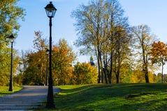 Sikten av gräsplan parkerar i stad royaltyfri foto