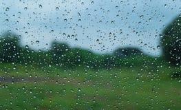 Sikten av grön trädbakgrund i bakgården ser som bergen på den regniga dagen, sikt förutom fönstret Royaltyfria Foton