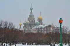 Sikten av kyrkan av frälsaren på blod från fältet av fördärvar i St Petersburg, Ryssland Fotografering för Bildbyråer