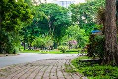 Sikten av Lumpini parkerar, Bangkok Arkivfoton