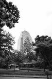 Sikten av Lumphini parkerar, Bangkok Arkivfoto
