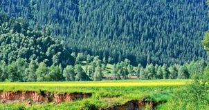 Sikten av Menyuan, Qinghai landskap Arkivfoto