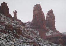 Sikten av rött vaggar under vinter Arkivfoto