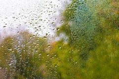 Sikten av regndroppar på fönster med det gröna, röda och gula färgträdet i bakgrund Autumn Abstract gjorde suddig bakgrunden arkivbild