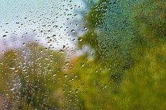 Sikten av regndroppar på fönster med det gröna, röda och gula färgträdet i bakgrund Autumn Abstract gjorde suddig bakgrunden arkivfoton