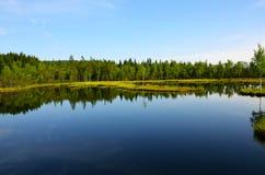 Sikten av sjön med öar Royaltyfri Fotografi