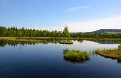 Sikten av sjön med öar mellan skogar Arkivbilder