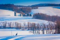 Sikten av snö täckte lantgårdfält och hus i lantliga York County royaltyfri foto