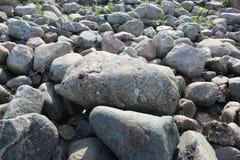 Sikten av stenar och kullersten i det lägre parkerar i Petergof arkivfoto