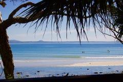 Sikten av stranden på Noosa med att hänga över gömma i handflatan ormbunksblad royaltyfri fotografi