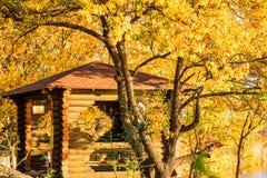 Sikten av trägazeboen i hösten parkerar royaltyfri bild