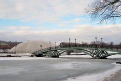 Sikten av Tsaritsyno parkerar i Moskva Bro över ett frosendamm Royaltyfri Bild
