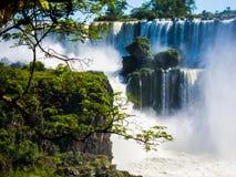 Sikten av vattnet faller i Cataratas del Iguazu parkerar Arkivbild