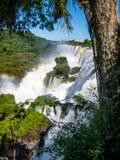 Sikten av vattnet faller i Cataratas del Iguazu parkerar Arkivbilder