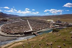Sikten av Yarchenen Gar Monastery med många sammanbor med för munkar in Royaltyfria Bilder