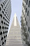 Sikten för den låga vinkeln av den Transamerica pyramiden San Francisco planlade vid William Pereira Arkivbilder