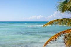 Sikten för det karibiska havet med gömma i handflatan sidor på den Saona ön, Dominikanska republiken royaltyfri bild