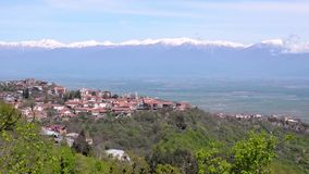 Sikten från avlägset staden Sighnaghi, den Alazani dalen och Kaukasuset spänner Klart soligt väder arkivfilmer