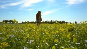 Sikten från blommanivåflicka går på bovetefält arkivfilmer