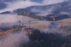 Sikten från den Vilemina vyhlidkaen förbiser, bohemmet Schweiz, Tjeckien Fotografering för Bildbyråer
