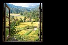 Sikten från fönster på ett underbart ris terrasserar med utrymme Arkivfoto