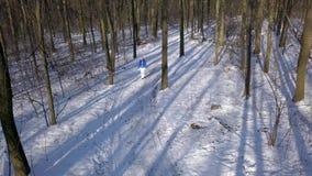 Sikten från höjd till kvinnan i varm kläder strosar längs en bana bland den härliga vintern snö-täckte landskapet clear stock video