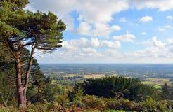 Sikten från Leith Hill över söderna besegrar till Brighton, UK Arkivbilder