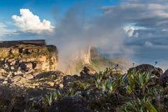 Sikten från platån av Roraima på den storslagna Sabanaen - Venezuela, Latinamerika Arkivfoto