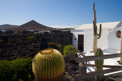 Sikten från terrass av Cesars Manriques hus Arkivfoto
