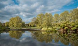 Sikten från vaggar trädgårdar in mot Preston Park på en solig dag royaltyfria bilder