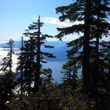 Sikten kunde se att de nära öarna i havet från den provinsiella överkanten av cypressen parkerar royaltyfri bild