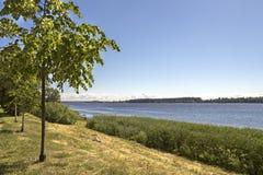 Sikten på Daugavafloden och parkerar latvia riga Fotografering för Bildbyråer