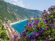Sikten till den Corniglia drevstationen med den Lycianthes rantonnetiien blommar i förgrunden, Cinque Terre, Italien royaltyfria foton