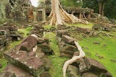 Sikten till fördärvar av den Banteay Kdei templet i Siem Reap, Cambodja Fotografering för Bildbyråer